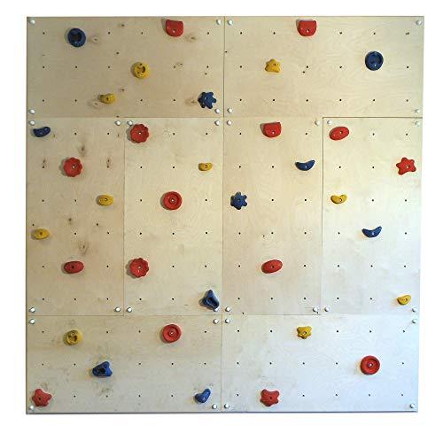 Indoor Kletterwand IW8 240 x 240 cm mit 40 Klettersteinen von Gartenpirat®